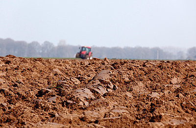 Agriculture in Germany - p2280574 by photocake.de
