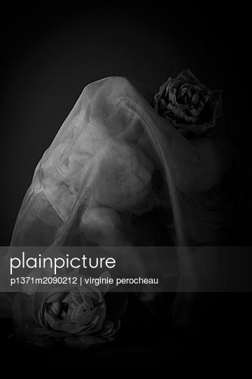 p1371m2090212 by virginie perocheau