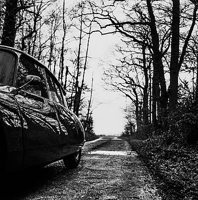 Citroen on dirt road in a grove - p1082m2228230 by Daniel Allan