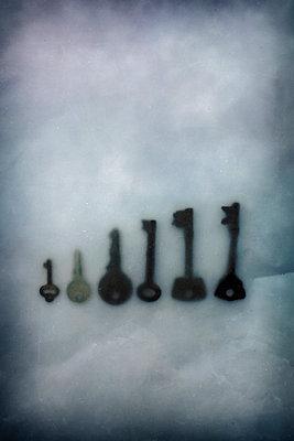Keys frozen in ice - p1228m1193818 by Benjamin Harte
