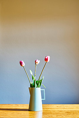Three pink tulips in a carafe - p1312m2103821 by Axel Killian