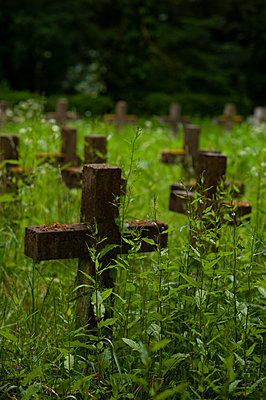 Crosses marking graves in an overgrown cemetery - p1047m2022278 by Sally Mundy