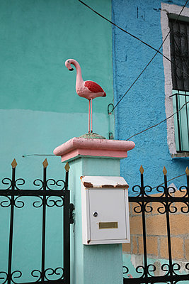 Flamingo on fence with letterbox - p375m1563843 by whatapicture