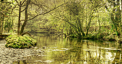 River in Wales - p1072m830398 by Joe Eitzen