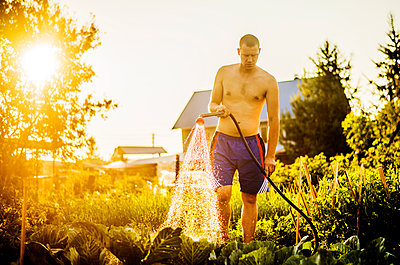 Caucasian man watering plants in backyard - p555m1412352 by Aleksander Rubtsov