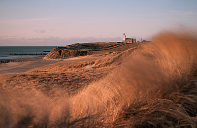 Wind in the dunes - p992m892675 by Carmen Spitznagel