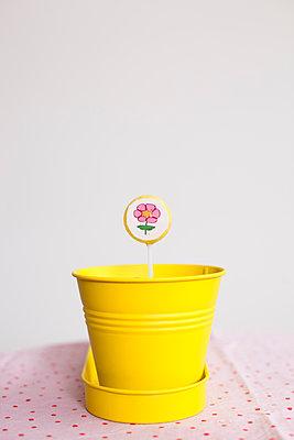 Lutscherblumen - p505m902986 von Iris Wolf