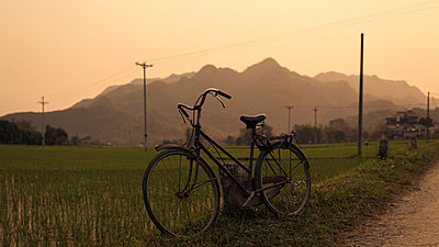 Bicycle parked next to paddy field - p1324m1165225 by Michael Hopf
