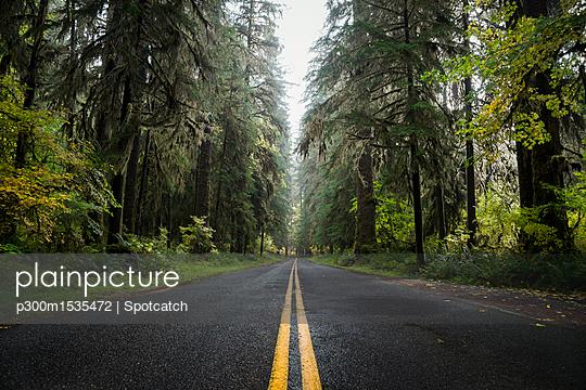 p300m1535472 von Spotcatch