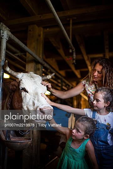 Mother and daughters in cow stable - p1007m2219978 by Tilby Vattard