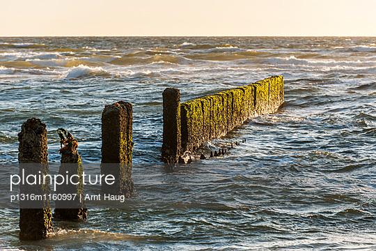 Buhnen im Wasser, Kampen, Sylt, Schleswig-Holstein, Deutschland - p1316m1160997 von Arnt Haug