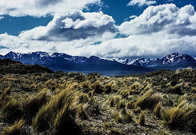 Beagle Channel at Tierra del Fuego - p741m892684 by Christof Mattes