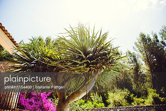 Ferien - p904m1154400 von Stefanie Neumann