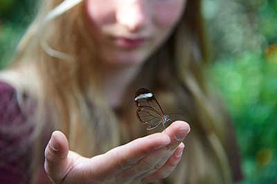Girl holding butterfly in her hand - p763m1160161 by co-o-peration