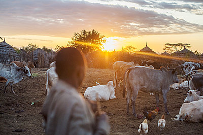Africa, Uganda, Pastoralist - p1167m2283458 by Maria Schiffer