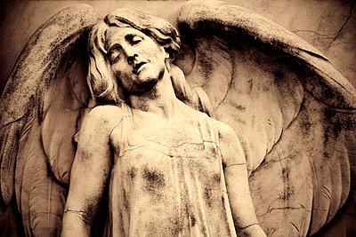 Hungary, Budapest, Kerepesi Cemetery - p6511509 by Michele Falzone