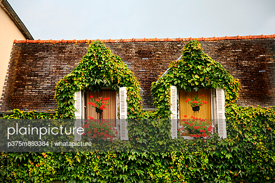 Overgrown - p375m893384 by whatapicture