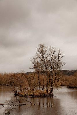 Périgord Noir - p248m966664 by BY