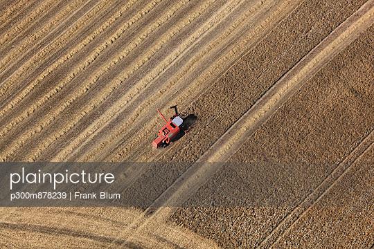 p300m878239 von Frank Blum