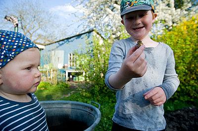 Kinder spielen mit Schnecken - p116m1564158 von Gianna Schade