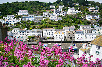 Polperro in cornwall - p9244173f by Image Source