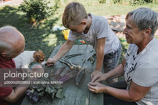 Grandparents in the garden with grandson and dog - p300m2029803 von Katharina Mikhrin