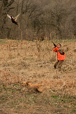 Female Upland Hunter Aiming At Pheasant - p442m1179804 by Mitch Kezar