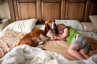 Toddler boy waking up in bed with basset hound dog next to him at home - p1166m2148801 by Cavan Images