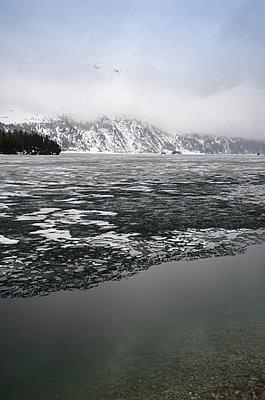 Winter at lake Como - p335m813170 by Andreas Körner