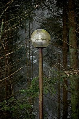 Laterne im Winter - p5864733 von Kniel Synnatzschke