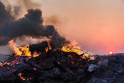 Qualmendes Feuer II - p739m900747 von Baertels
