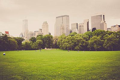 Grünanlage in New York City - p946m694721 von Maren Becker