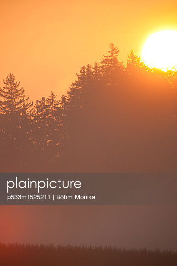 Sonnenaufgang im Morgennebel - p533m1525211 von Böhm Monika
