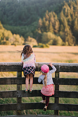 Rear view of sisters climbing on wooden fence - p1166m1489782 by Cavan Images