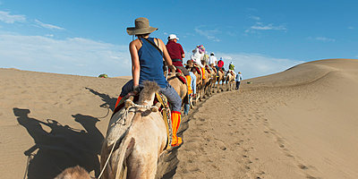 Tourists ride in a row on camels; Jiuquan, Gansu, China - p442m824151 by Keith Levit