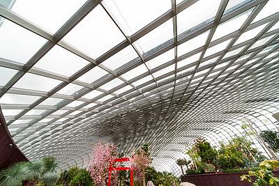 Singapore Flower Dome - p1154m2022446 by Tom Hogan