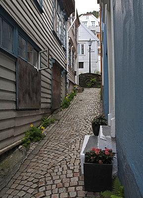 Cobblestone street in old Scandinavian town - p575m696324f by Kate Karrberg