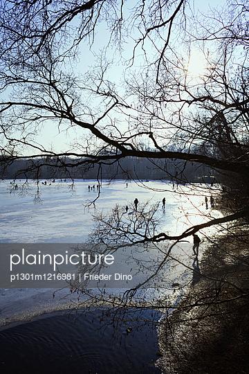 Zugefrorener See in Berlin - p1301m1216981 von Delia Baum