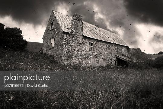 p37816673 von David Curtis