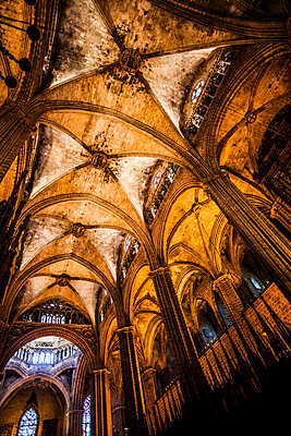 Cathedral of Barcelona - p253m1006754 by Oscar
