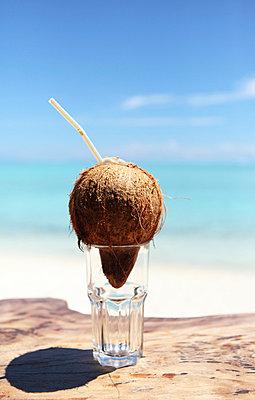 Coconut - p045m716342 by Jasmin Sander