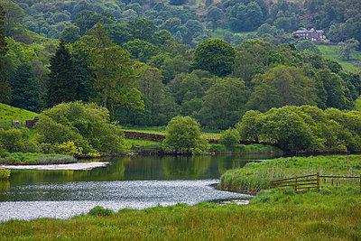 River flowing through grassy field - p42915294f by Thorsten Henn
