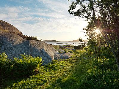 West coast of Sweden - p972m1136630 by Felix Odell