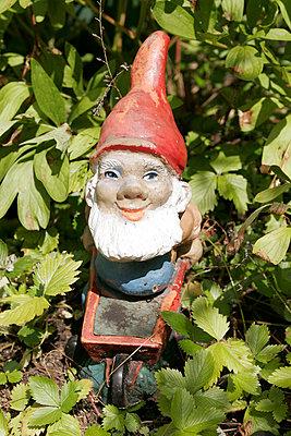 Zwerg im Garten - p1650485 von Andrea Schoenrock