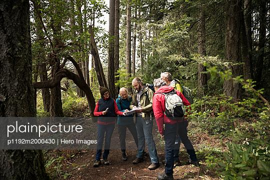 p1192m2000430 von Hero Images