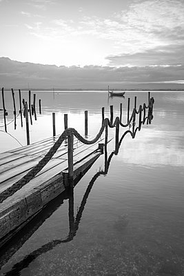 old wooden port submerged in the Ria de Aveiro - p1166m2152246 by Cavan Images