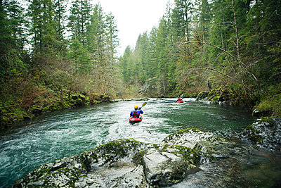 Rear view of kayakers paddling through river in forest - p1166m1534048 by Cavan Images