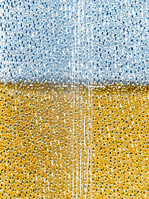 Cleaning sponges - p401m2260867 by Frank Baquet