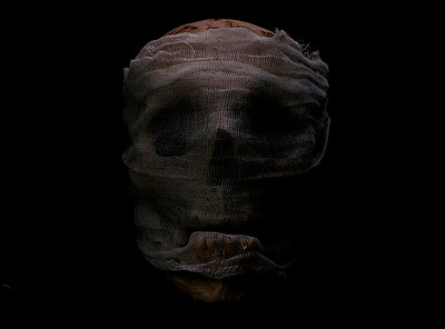 Skull - p6180294 by Capturaimages