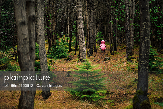 Curious child sitting among trees - p1166m2130812 by Cavan Images